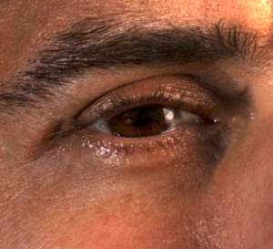 Close up of Chris's eye, from this gigapan.